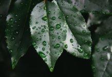 начало сезона дождей во Вьетнаме