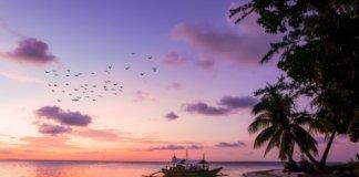 Все про остров Орхидей в Нячанге