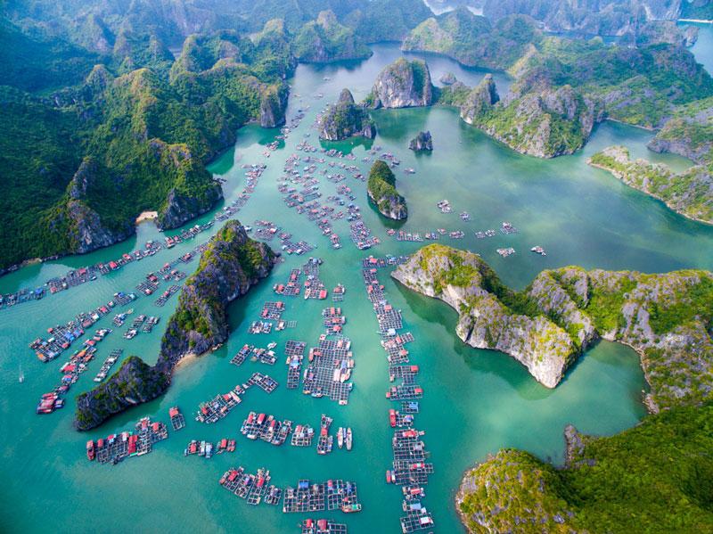 Национальный парк Кать Ба, Вьетнам