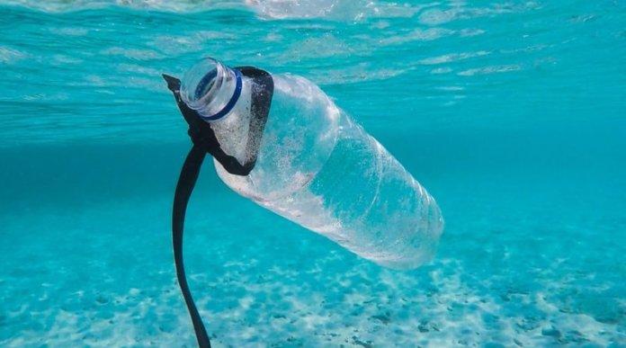 Акции по защите окружающей среды в Нячанге