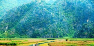 коронавирус во вьетнаме, нячанге, стоит ли лететь